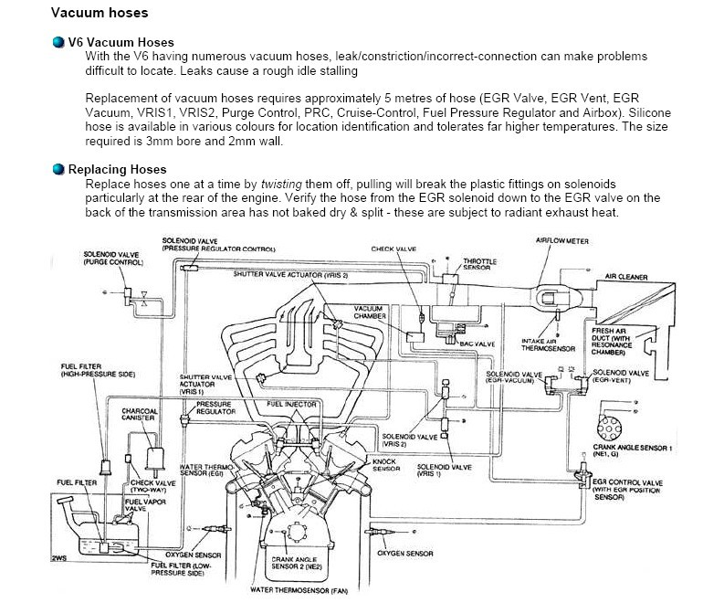 pictures and diagrams of the vacuum circuit of the ford probe rh fordprobe24v com 1997 ford probe vacuum diagram 1989 ford probe gt vacuum diagram